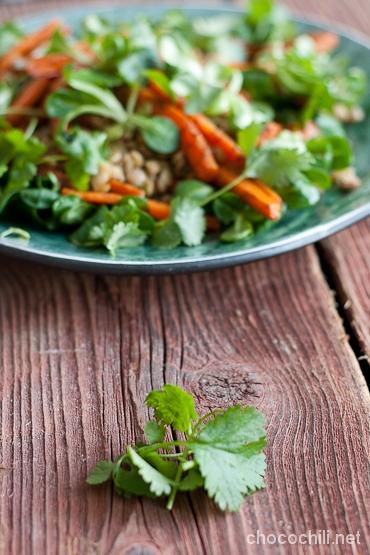 porkkana-linssisalaatti2
